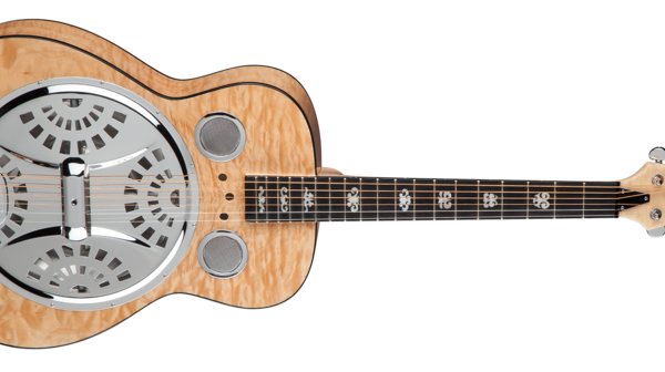 DEAN Resonator Spider